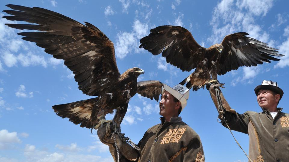 Kyrgyz berkutchy (eagle hunters) launch their Golden Eagles at the 'Ethno Fest'.  The use of eagles to hunt land prey is a time-old tradition observed across the Central Asian steppes.  (Vyacheslav Oseledko / AFP)