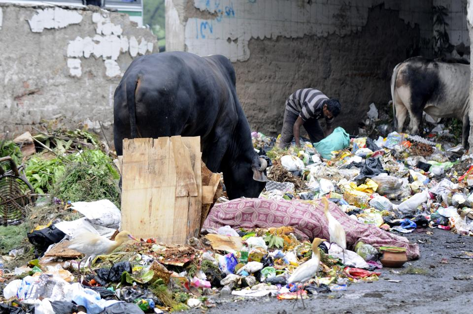 Noida authority plans to rope in RWAs and individual residents in managing garbage at source.