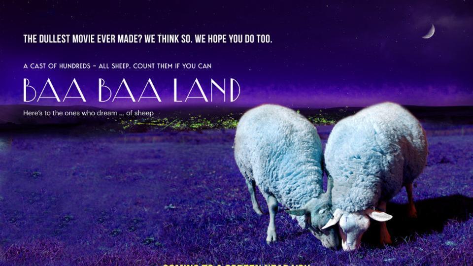 Baa Baa Land,Slow Cinema,Sheep movie