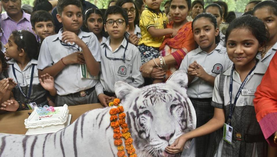 School children celebrate the birthday of tiger 'Vijay' along with zoo officials on Thursday.