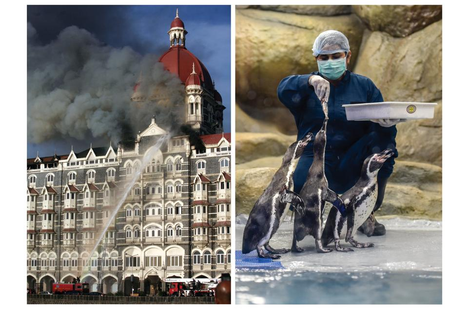 Mumbai,26/11 terror attacks,World Cup