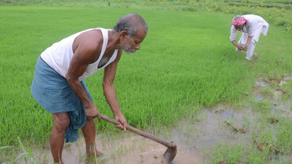 CAG,Comptroller and Auditor General of India,Crop insurance schemes