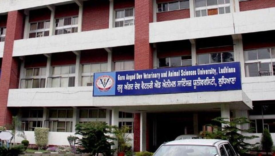 GADVASU,Ludhiana,veterinary and animal sciences courses