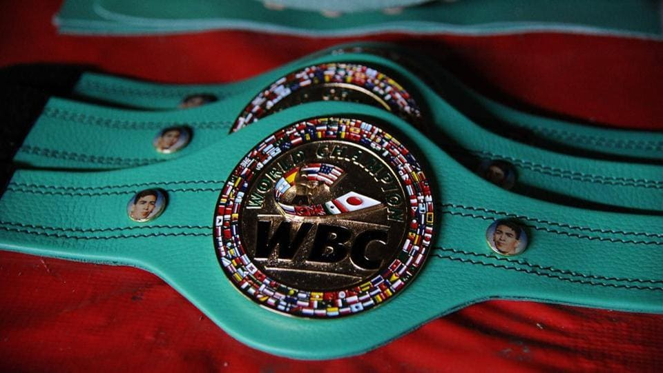 World Boxing Council belts made at Reyes Industries, are displayed at the company's headquarters. (Bernardo Montoya / AFP)