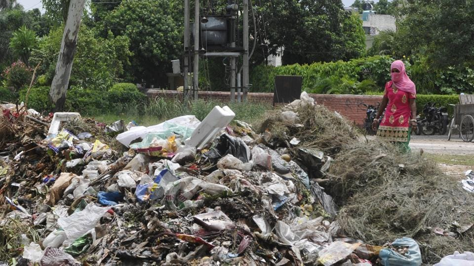Chandigarh,waste management,NGT
