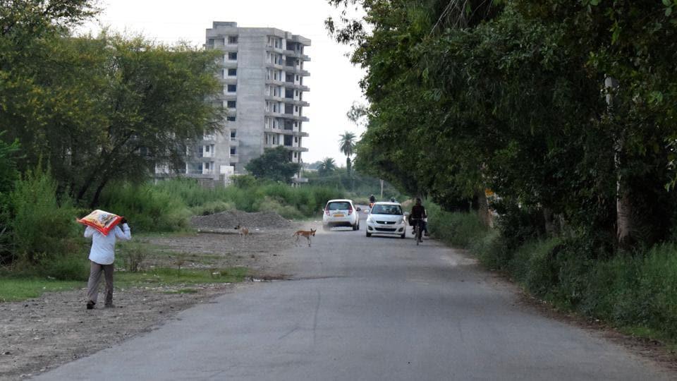 Punjab civic bodies,Punjab Municipal Act 1976,roads