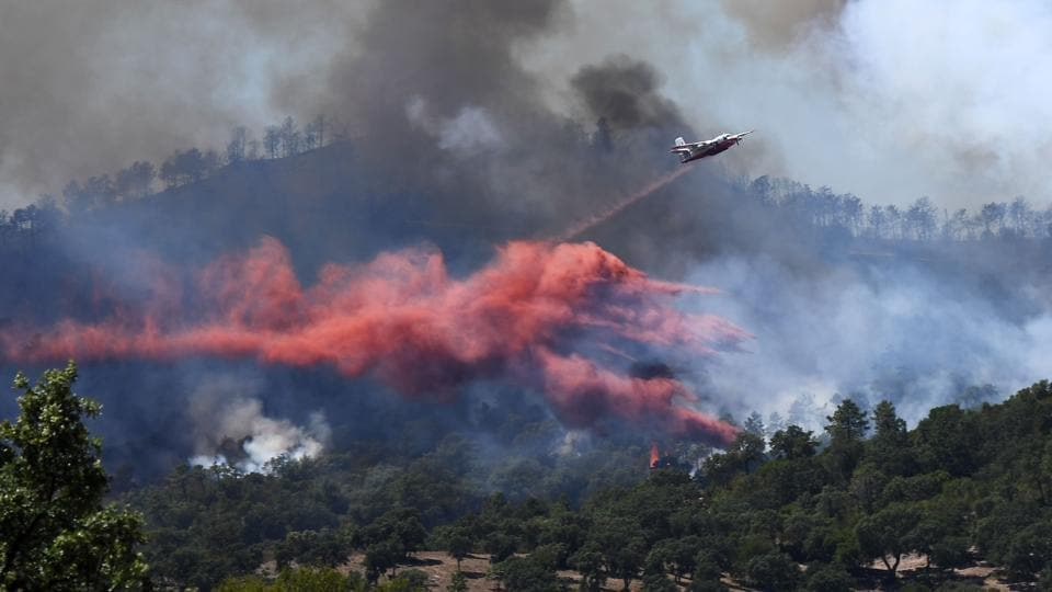 A fire fighting Canadair aircraft drops fire retardant over a fire near Bormes-les-Mimosas. (Anne-Christine / AFP)