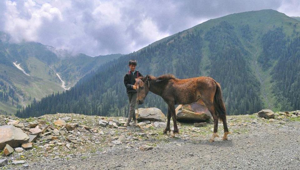 A boy poses with his pony on Bandipora- Gurez road.