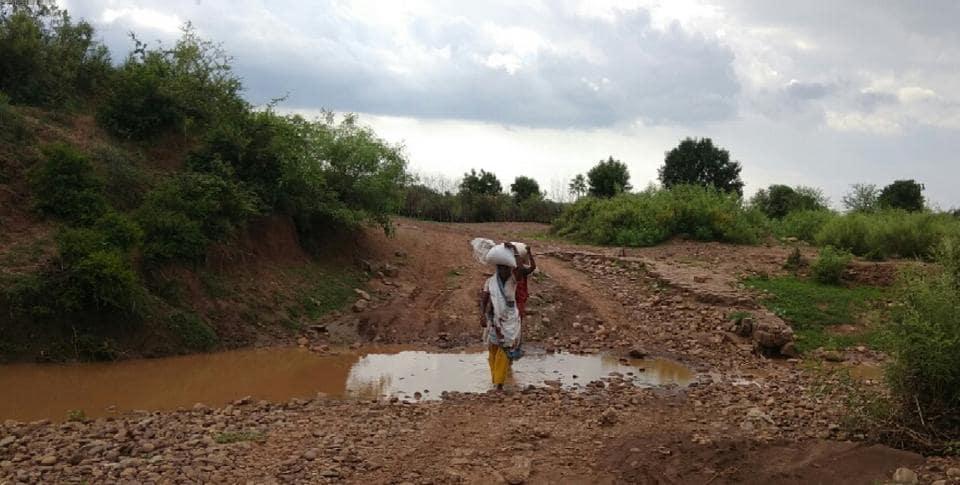Rajasthan news,Sahariya,Swollen rivulet