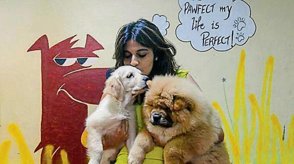 Niharika Sekhri with her dogs at Pawfect Life in Andheri.