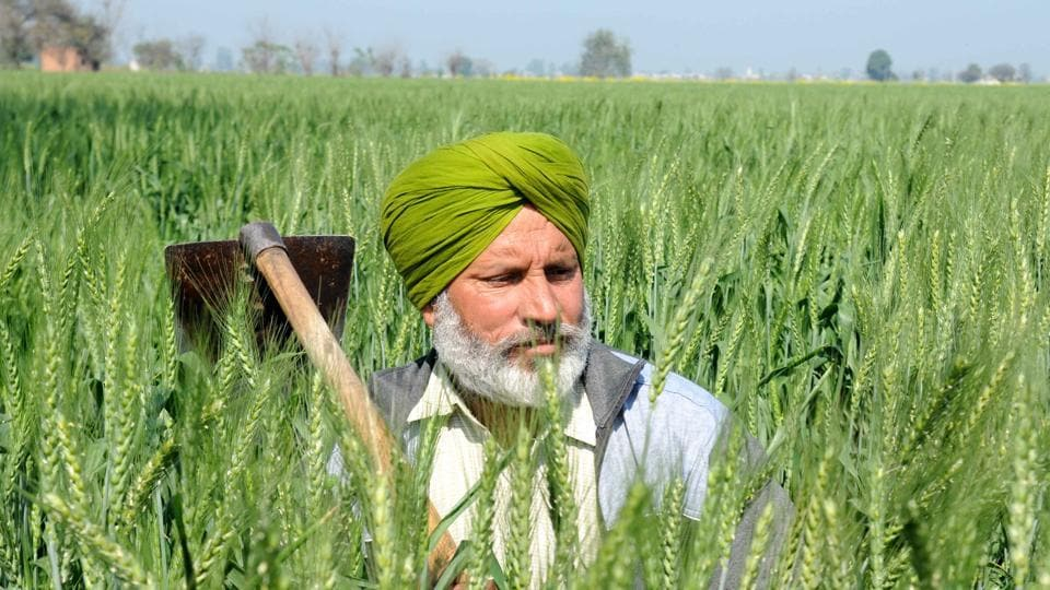 OnMonday and Tuesday, members of the panel visited Amritsar and Ludhiana to meet farmers and know their side of story.
