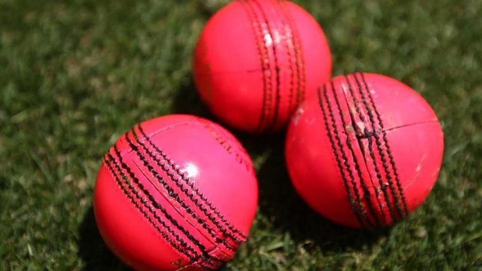New Zealand hope to host a day-night match for the first time next year as part of a two-Test series against England.