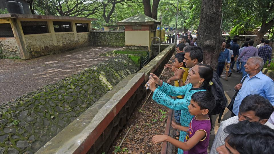 The Brihanmumbai Municipal Corporation collected a total of Rs65,000 in entry fees from the Byculla zoo on Tuesday.