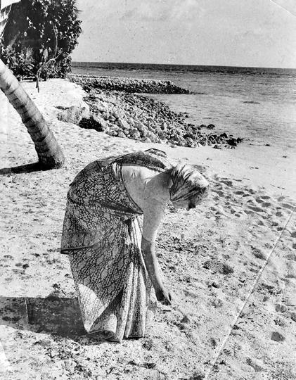 Indira Gandhi picking seashells in the Andamans.
