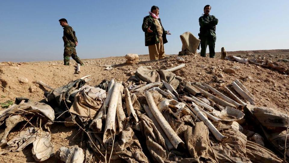 It is the latest of dozens of such grisly finds made by Iraqi forces since they drove the jihadists out of the swathes of northern and western Iraq that they occupied in 2014. In picture: View of a mass grave in the town of Sinjar after it was recaptured by the Iraqi force last year.