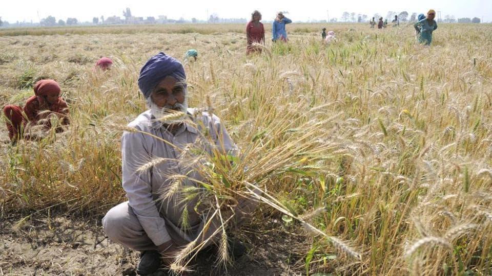 deb waiver,farm debt,crop loan