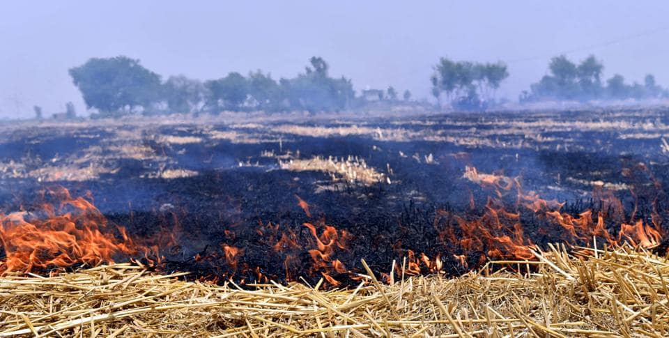 Pollution levels in Delhi shoot up in September-October primarily because of stubble burning in Punjab and Haryana.