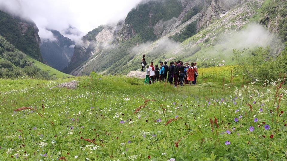 A view of Valley of Flowers.