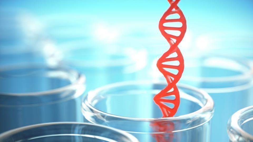 Mumbai,DNA test,sessions court