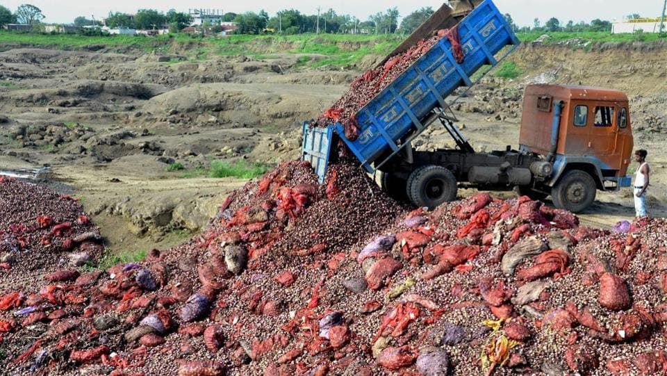 A dumper dumps rotten onions at a ditch on the outskirts of Bhopal on Monday. (PTI)