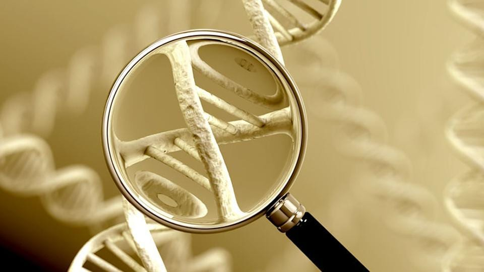 Representative photo of human DNA. The implications of creating regional and national level DNA databanks need to be fully understood and publicly debated. DNA is not foolproof  – false matches can take place for multiple reasons.