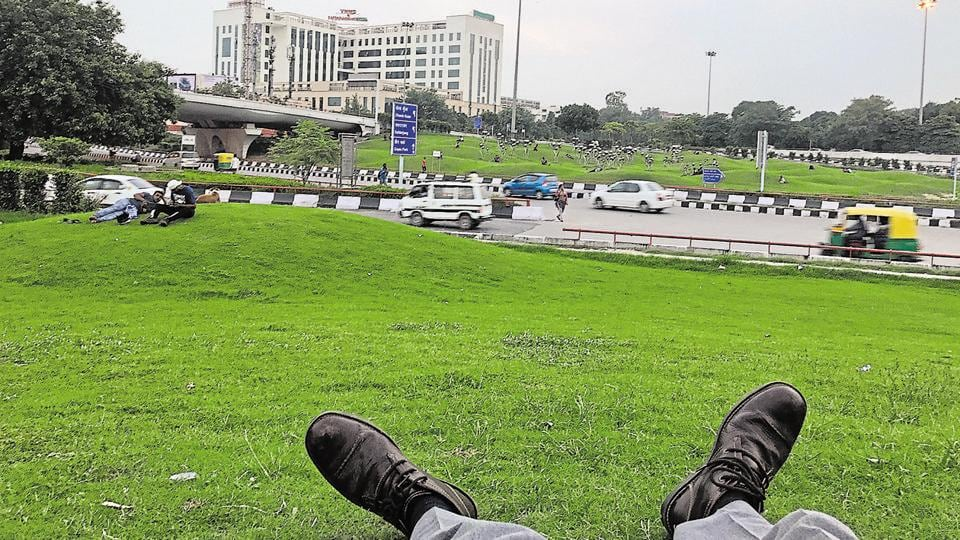 Lounging in the garden under the AIIMS flyover.