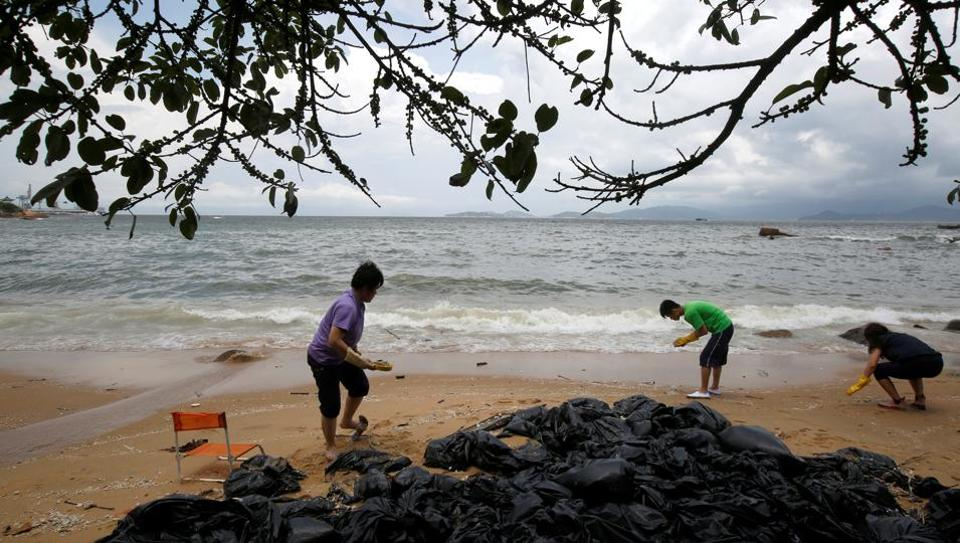 Volunteers collect crystallised palm oil on a beach at Lamma Island in Hong Kong.