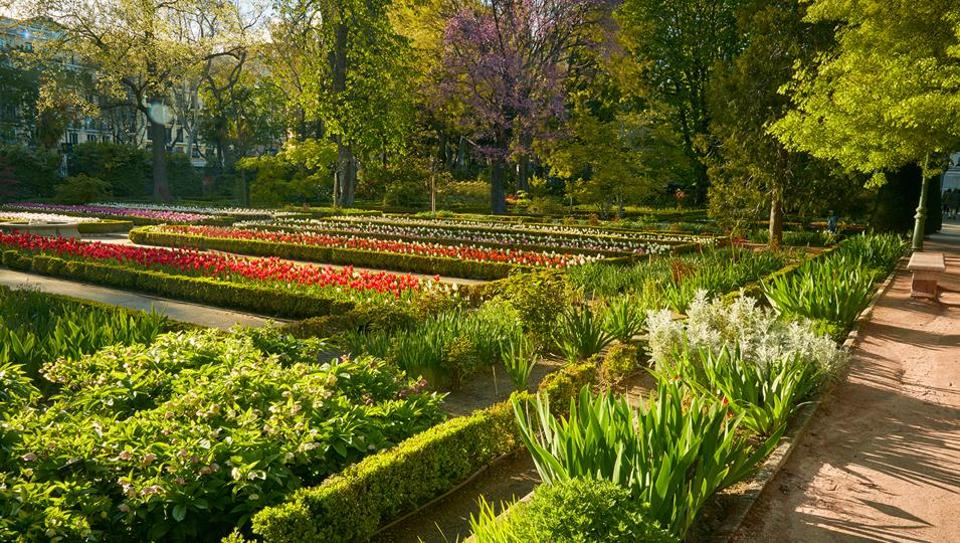At the end of the 19th century, the garden lost two of its 10 hectares to the Ministry of Agriculture and 564 of its trees to a cyclone.