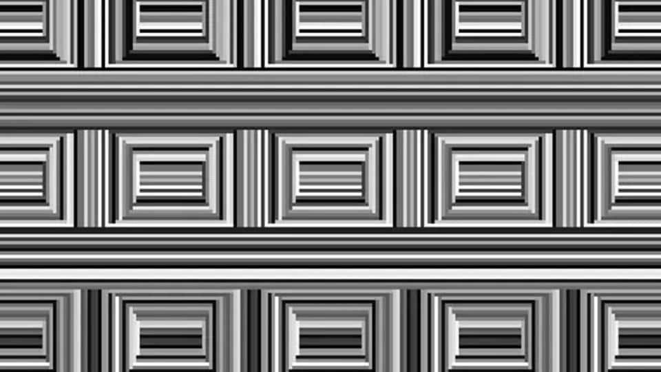 illusion,coffer illusion,internet