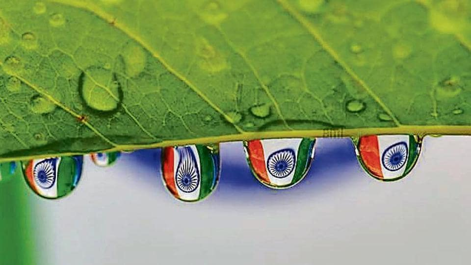 The Tricolour's reflection in raindrops on a leaf