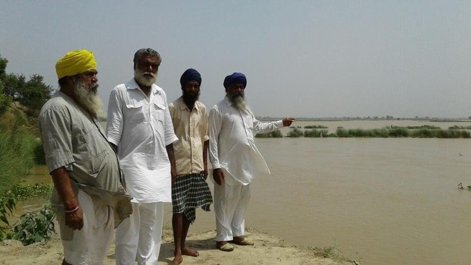 Punjab farmers,tarn Taran,river Beas