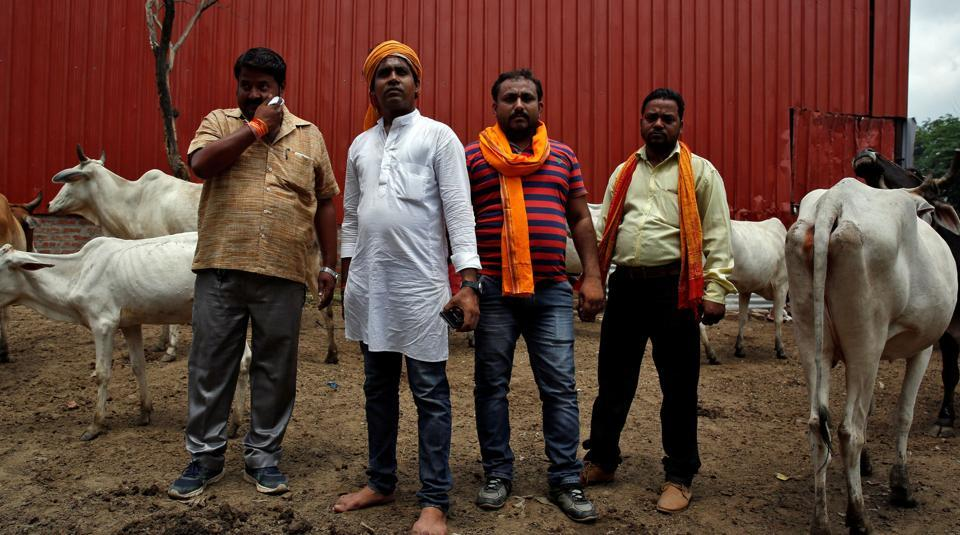 Digvijay Nath Tiwari (L), the commander, and other members of a Hindu nationalist vigilante group established to protect cows, are pictured with animals they claimed to have saved from slaughter, in Agra, India August 8, 2016.