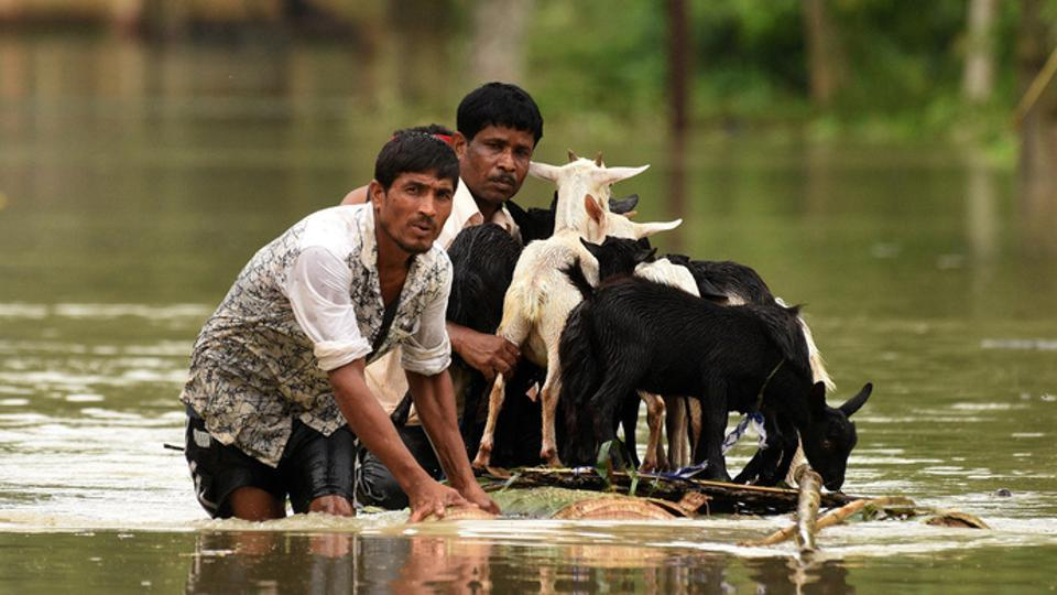 People use a makeshift raft to transport goats as they wade through a flooded road in Jakhalabandha area in Nagaon district, in Assam, on Monday.