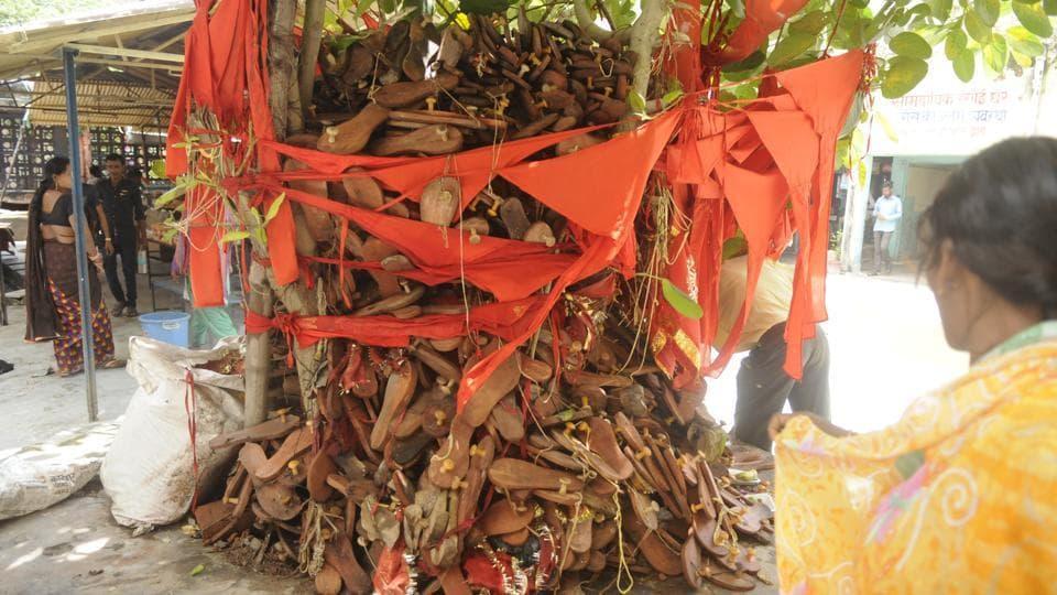 Deaths,Gorakhpur tragedy,Peepal tree
