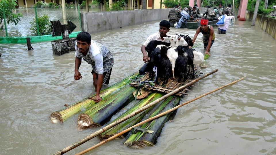 Assam,Flood,Assam Flood