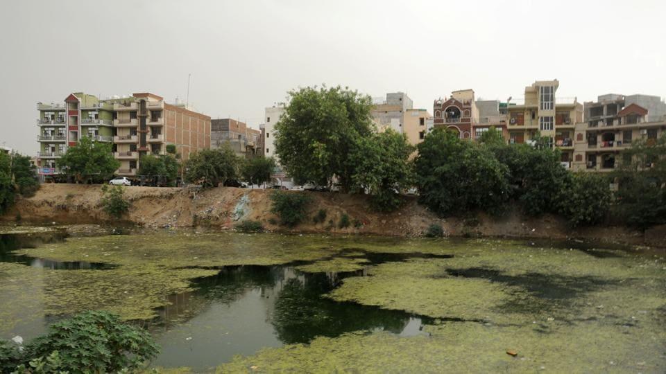 Municipal Corporation of Gurugram,Najafgarh drain,MCG ponds