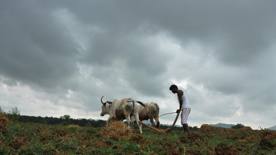 Maharashtra government,farm loans,loan waiver