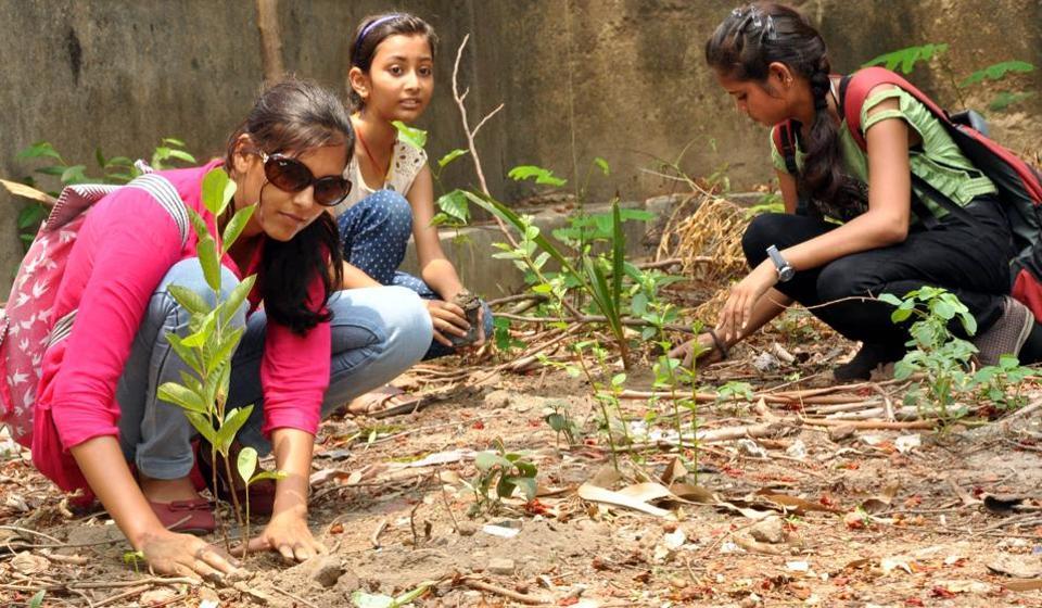 Mumbai,saplings,Van Mahotsav