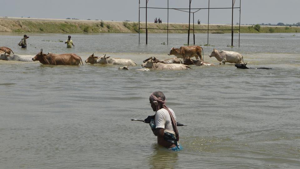 South Asia,Flooding,India