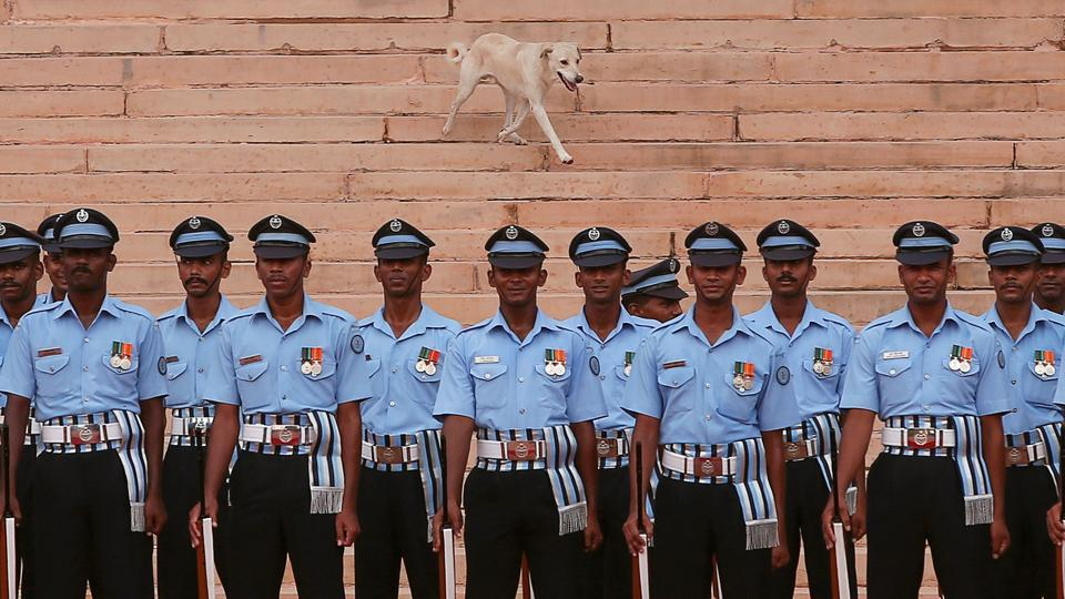 Soldiers stand at attention as a dog runs behind during a ceremonial reception for Nepalese Prime Minister Sher Bahadur Deuba at the forecourt of India's Rashtrapati Bhavan presidential palace in New Delhi. (REUTERS)