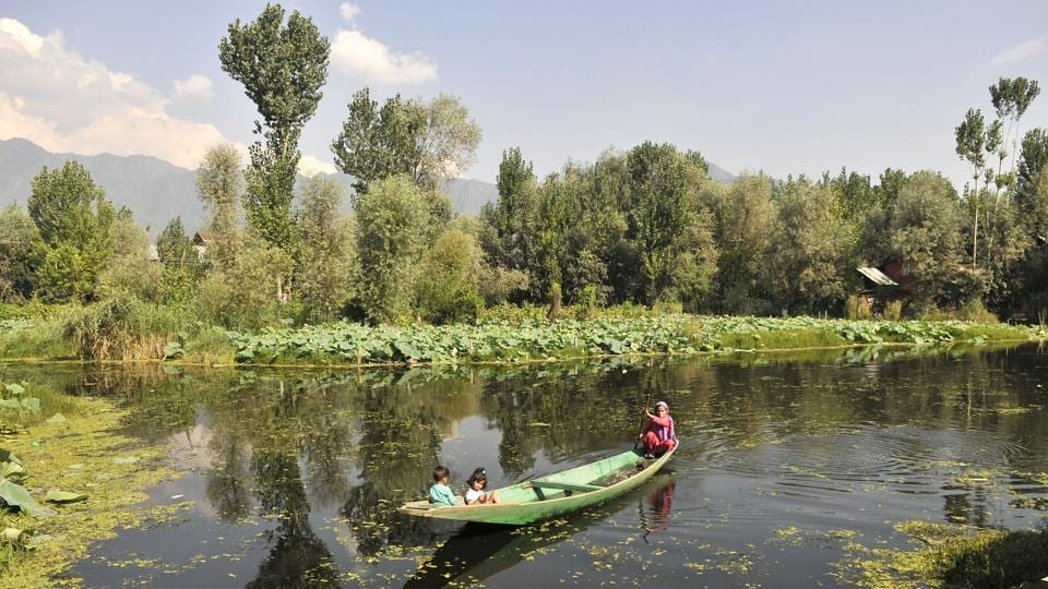 A Kashmiri woman rows a boat through the  Dal Lake in Srinagar. (Waseem Andrabi / HT PHOTO)