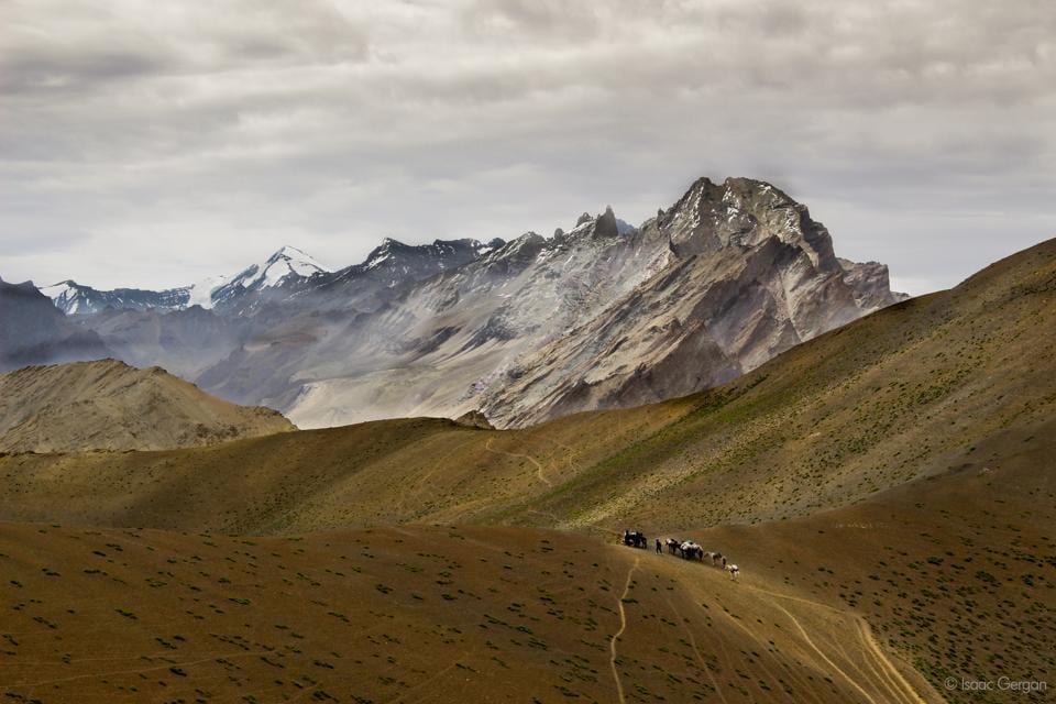 Herdsmen in Zanskar valley. (Isaac Tsetan Gergan)