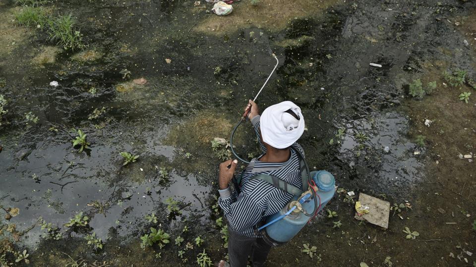 Delhi dengue,Delhi chikungunya,Delhi malaria