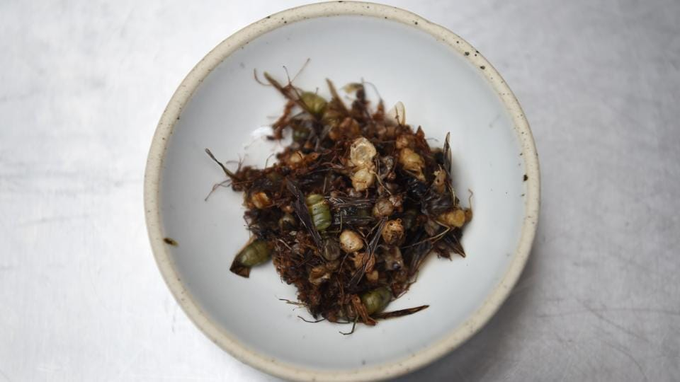 While Western culture continues to struggle to break barriers around edible insects as part of a daily diet, the custom has been prevalent in most parts of Asia-Pacific for ages. The region is comprised of various cultural groups that embraced insects in their diet, determined mostly by economic considerations shaping dietary preferences. While mostly common among the 'lower class' in the past, insect cuisine now is slowly making its way into the menus of high end restaurants in Bangkok. (Lillian Suwanrumpha / AFP)