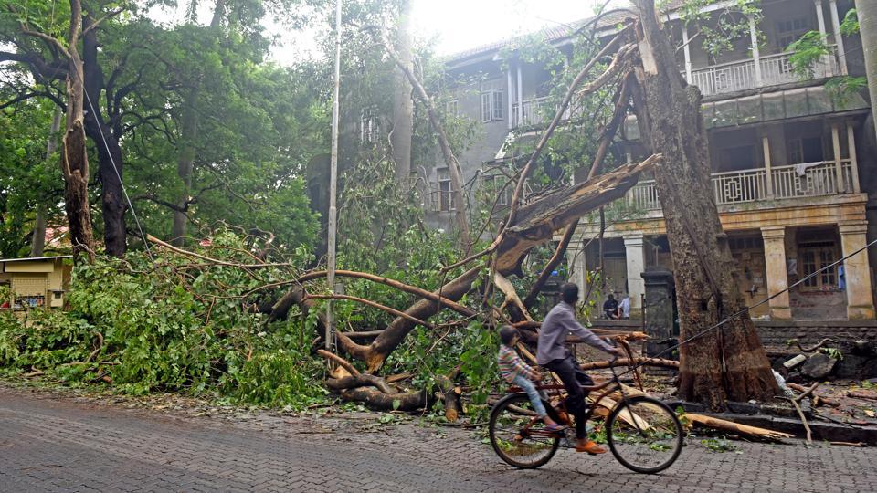 Maharashtra government,BJP,Mumbai rains