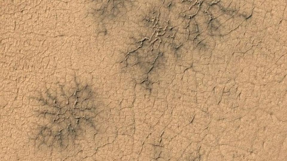Scientists found landforms known as 'spiders' on parts of Mars.