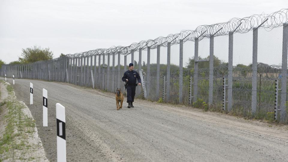 A police officer with a dog patrols along the border fence on the Hungarian-Serbian border near Roszke, 180 kms southeast of Budapest, Hungary on April 28.