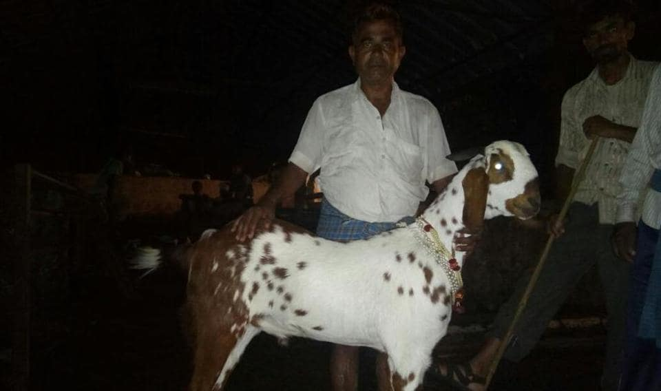 Gopalrao Sohail with his prized possession.