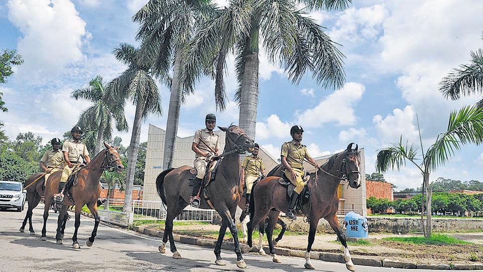 Mounted police keeping vigil on the Panjab University campus.