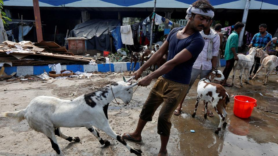 A trader pulls a goat to bathe at a livestock market ahead of the Eid al-Adha festival in Kolkata. (Rupak De Chowdhuri / REUTERS)